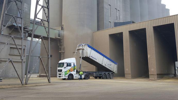 Déchargement d'un camion de blé