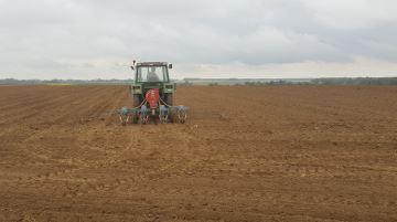 Seul un quart des éleveurssème leurs maïs avant le 15 avril