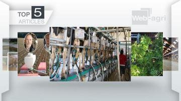 Conjoncture laitière, fourrages ligneux et couverture des bâtiments à la Une