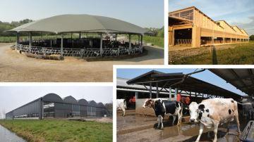 Miser (ou pas) sur un bâtiment d'élevage alternatif
