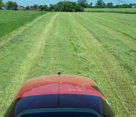 Fauche de l'herbe pour faire du foin