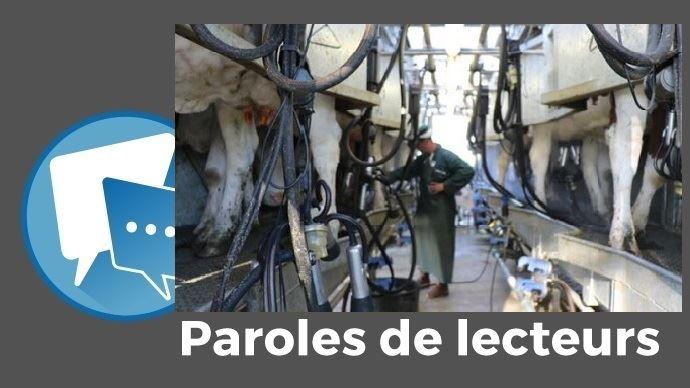 paroles de lecteurs web agri installation et investissement en production laitiere