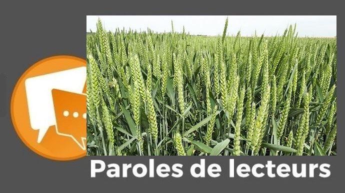 paroles de lecteurs varietes hybrides cereales colza