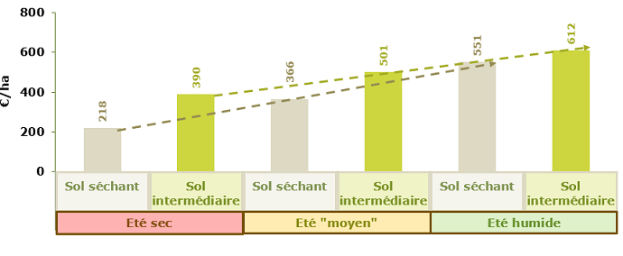 Marges brutes tournesol indicatives simulées en fonction de la pluviométrie de l'été et du type de sol