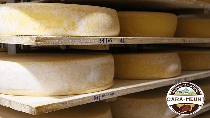 Meules de fromage transformé à la ferme