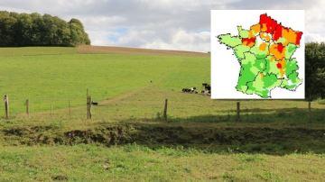Hauts-de-France et Grand Est: une production d'herbe très déficitaire