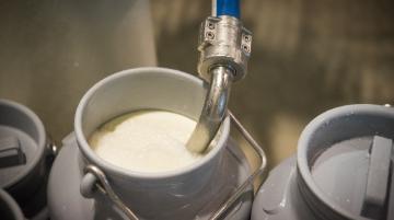 Un scénario catastrophe évité pour les produits laitiers, selon l'Idele