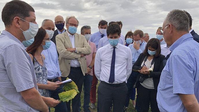 Julien Denormandie a visité une exploitation de Seine-et-Marne touchée par la jaunisse virale des betteraves.