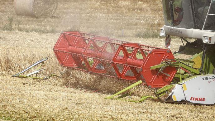 Blé : hausse des prévisions de récolte au Canada et en Russie