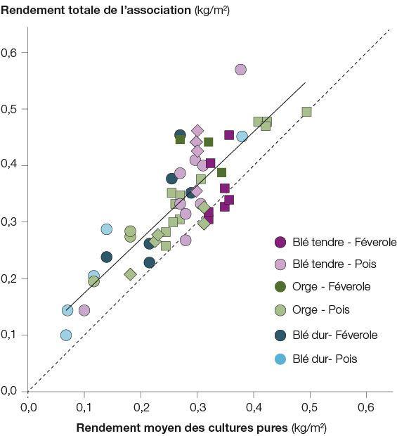 Rendement total (céréale + protéagineux) de l'association en fonction du rendement moyen des cultures pures
