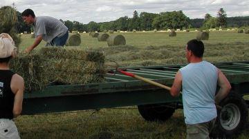 La convention collective nationale agricole voit le jour