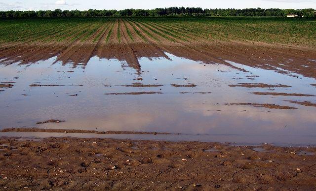 Après lasécheresse, la France souffre d'excès hydrique
