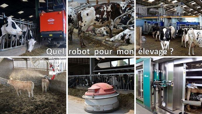 La robotique pour automatiser l'élevage