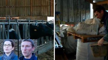 François et Irène «délèguent les cultures pour réussir l'élevage»