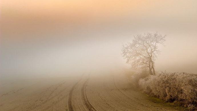 Paysage avec brouillard