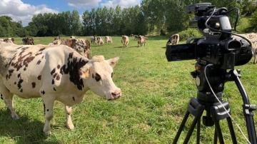 Revivez les meilleurs reportages en élevage de l'année 2020