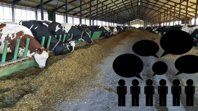 Réactions suite à l'annonce de la fermeture des 1000 vaches