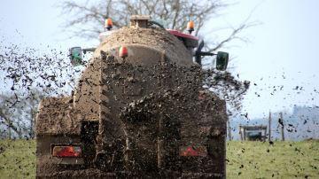 Lisiers et fumiers: des engrais complets pour les prairies