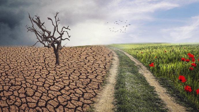 Score CO2 sur les produits, délit d'écocide, menu végétarien, artificialisation... Plusieurs mesures ont trait à l'agriculture dans le projet de loi Climat