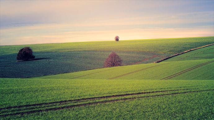 Les prix du foncier agricoles varient très fortement entre les pays européens.