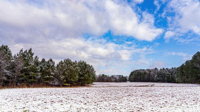champs neige