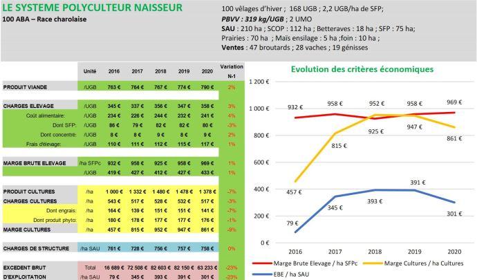 Résultats économiques 2020 d'un système bovin viande naisseur des Hauts-de-France