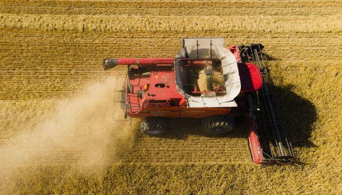 Selon le Conseil international des céréales, la hausse sensible de la production de blé en Europe, en Russie et en Ukraine contribueront à une «énorme récolte mondiale» en 2021-2022.