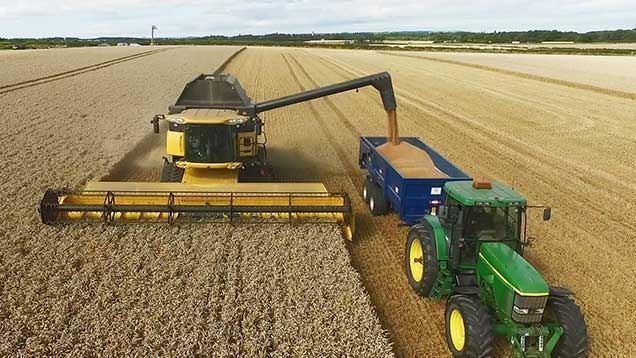 moissonneuse et remorque dans un champ de cereales