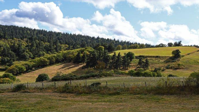 Pour le Modef, installer davantage d'agriculteurs sur de petites exploitations est important pour une alimentation plus locale, mais aussi pour dynamiser les territoires ruraux