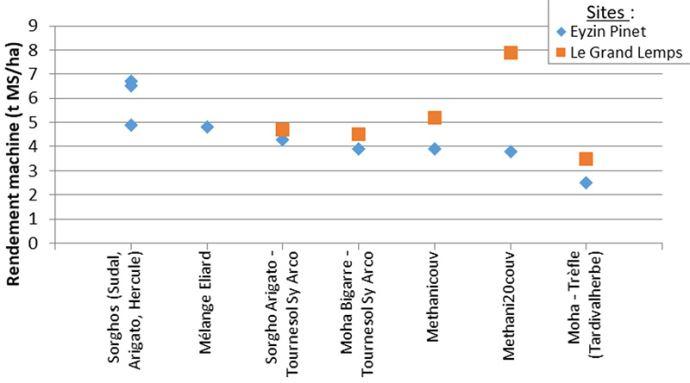 Rendement (ent MS/ha) de différentes espèces de CIVE d'été évaluées en 2019 sur deux sites d'essais de Rhône-Alpes