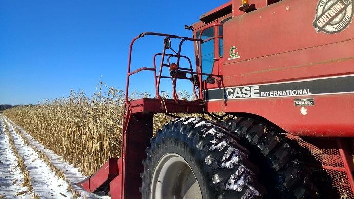 La chine vient de passer commande auprès des Etats-Unis de pas moins de 1,36 millions de tonnes de maïs nouvelle récolte livrable en 2021 et 2022.