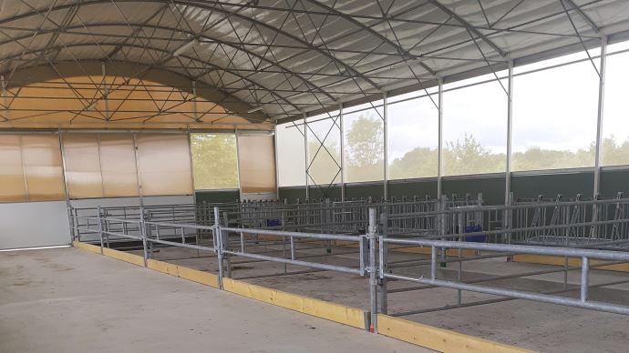 Bâtiment tunnel pour les génisses laitières