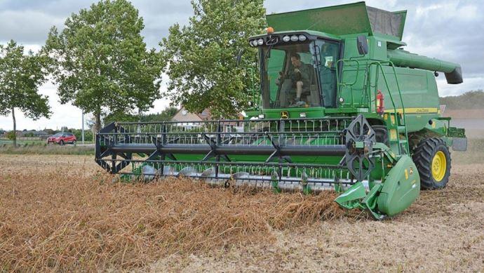 Récolte du soja