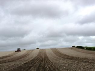 Etats-Unis : semis retardés à cause des pluies fortes