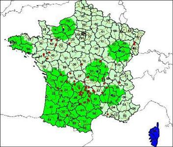 Modification de la zone réglementée suite à un cas dans l'Allier