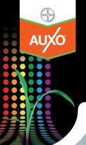 Auxo, l'herbicide large spectre de Bayer CropScience