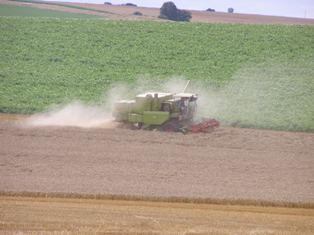 Des marchés agricoles à l'affût de la moindre rumeur