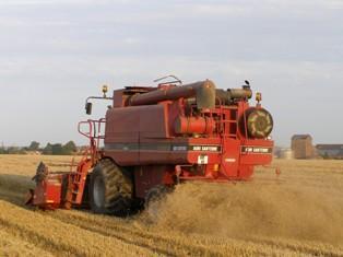 Les prix du soja et du blé se stabilisent avec une météo favorable