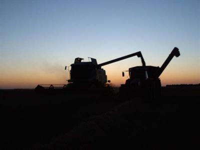 Nette hausse des prix du maïs, du blé et du soja