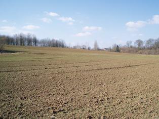 Avril 2011 rivalise avec avril 2007 en termes de chaleur