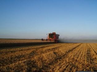 Une seule certitude, la récolte 2011 ne sera pas bonne en Europe