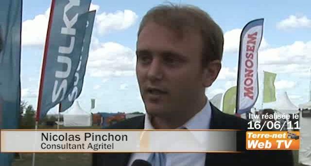 Nicolas Pinchon (Agritel) : « Des baisses de prix de 30 à 40 € du blé dans les prochaines semaines »