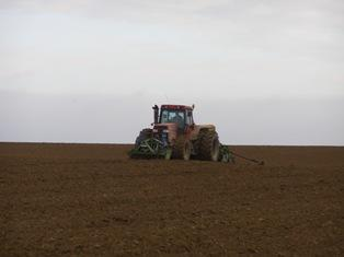 Vigilance sur les semis de blé au Canada