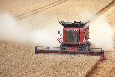 Maïs, soja et blé ballottés par la météo