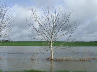 Bilan de l'épisode pluvieux en Méditerranée