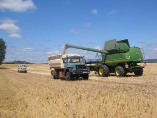 Maïs, soja et blé en ordre dispersé
