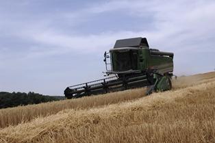Les prix agricoles se stabilisent après un rebond