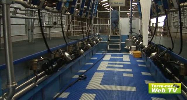 Nathalie Boucard (éleveuse) : « Les vaches ne retiennent pas. Il n'y a pas moyen de les faire coller ! »