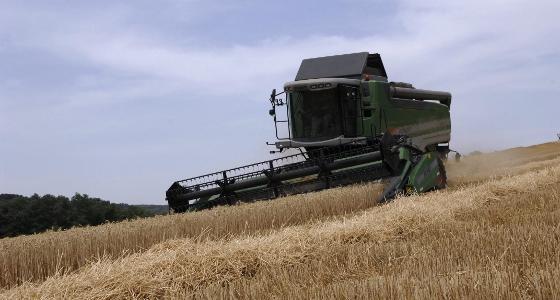 Le maïs, le blé et le soja se reprennent