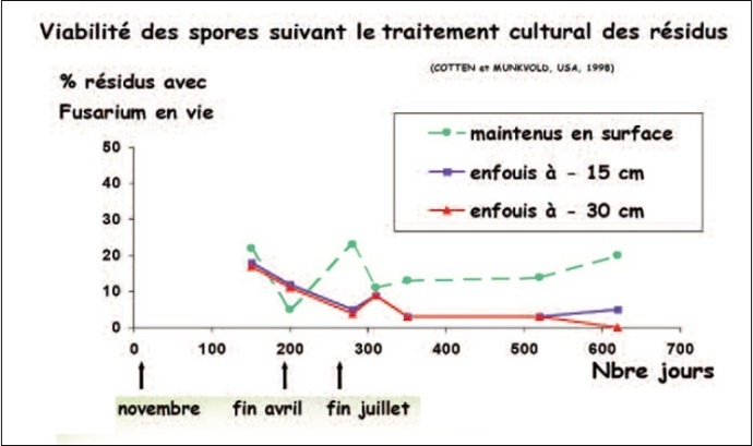 Figure 1 : Viabilité des spores de fusarium  en fonction du mode de gestion des résidus de maïs grain